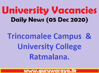 University Vacancies : Daily News (05 Dec 2020)