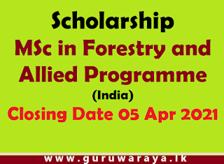 Scholarship : MSc in Forestry and Allied Programme (India)