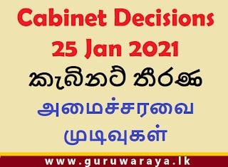 Cabinet Decision (25 Jan 2021)