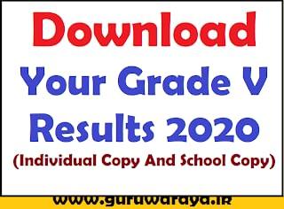 Download Your Grade V Result Sheet 2020 (Individual Copy and School Copy)