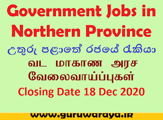 Government Vacancies in Northern Province