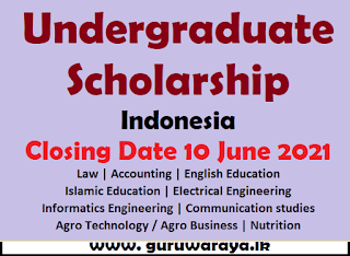 Undergraduate Scholarship : Indonesia