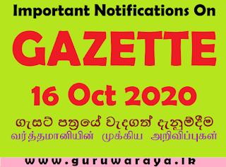 Important Notifications on Gazette (16 Oct 2020)