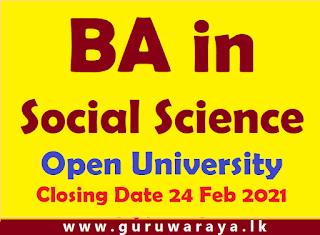BA in Social Sciences