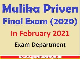 Mulika Priven Final Exam (2020)