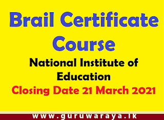 Brail Certificate Course : NIE