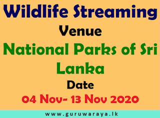 Sri Lanka Wild Life Streaming